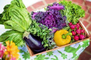 nasiona warzyw sklep internetowy